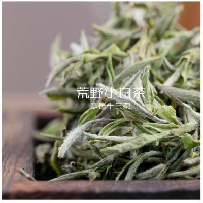 福鼎白茶 高山茶 2020年福鼎白茶小白茶 散茶 传统炭焙工艺