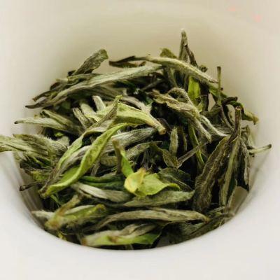 福鼎高山白茶  2020荒野牡丹王