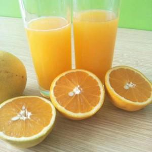秭归新鲜橙子,一年四季都有新鲜橙子吃。