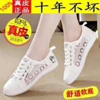 达芙尼女士真皮小白鞋夏季薄款透气平底百搭网面爆款休闲板鞋