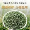 碧螺春茶叶绿茶2020新茶明前特级正宗苏州原产地浓香型春茶500g罐装