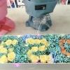 """520玫瑰花""""金枝玉叶"""""""