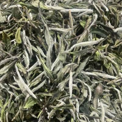 福鼎白茶2021年荒野牡丹王,花香蜜甜,500克